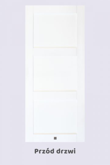 Drzwi przesuwne ANGEL, biel kryjąca
